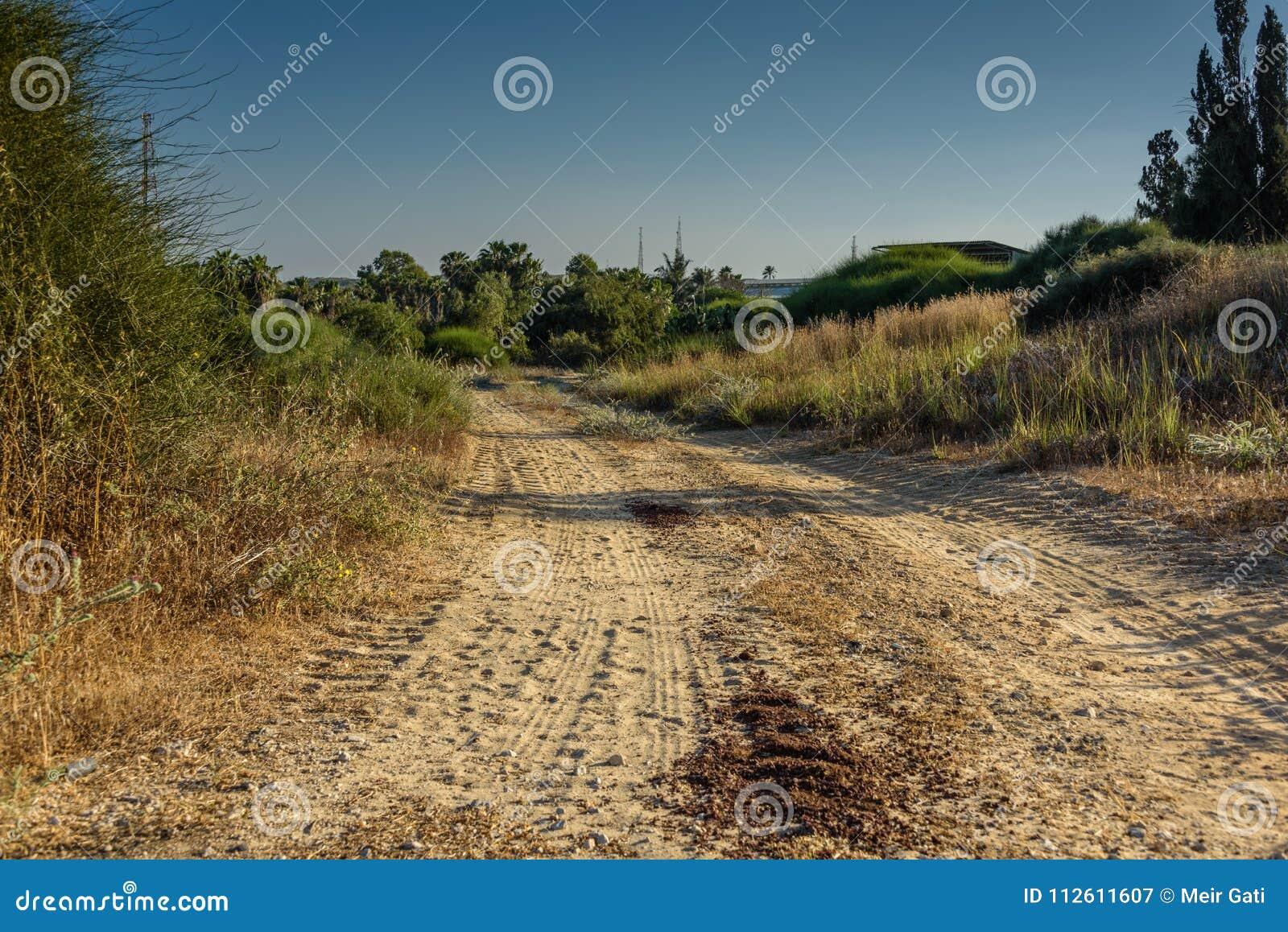 Uma estrada de terra frequentemente usada