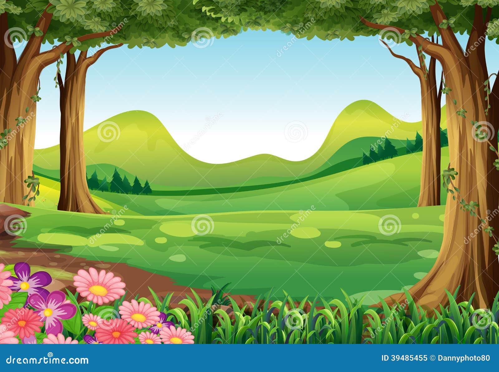 Uma floresta verde