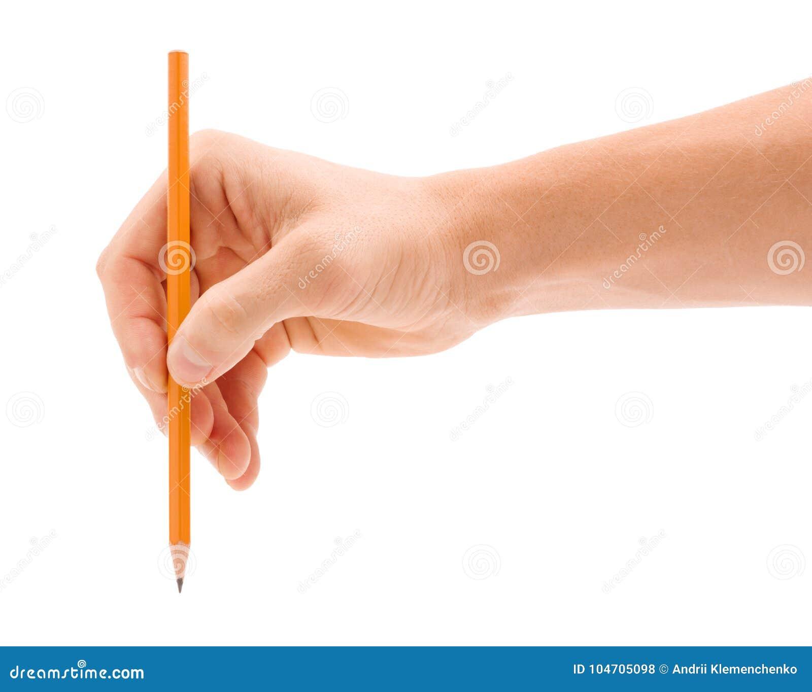 Uma mão do ` s do homem com um lápis é isolada em um fundo branco