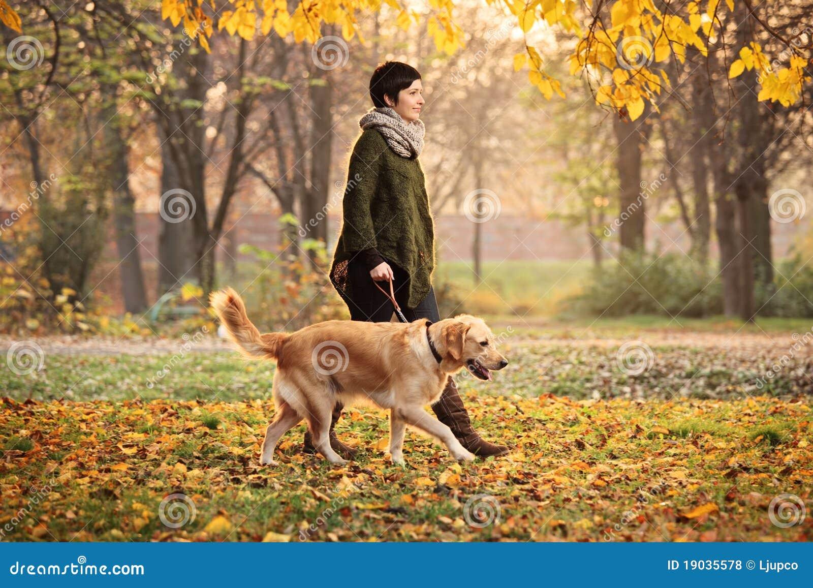 Uma menina e seu cão que andam em um parque no outono