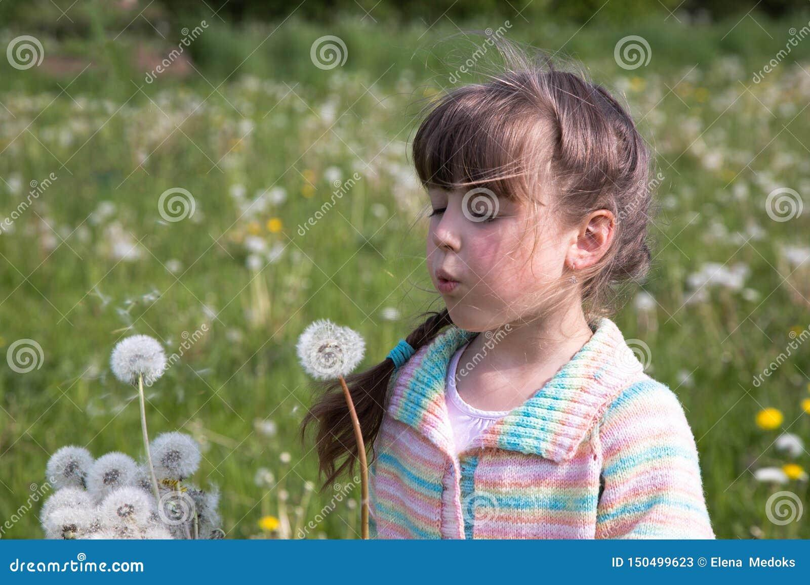 Uma moça no amanhecer em um prado da mola que funde em um ramalhete dos dentes-de-leão brancos