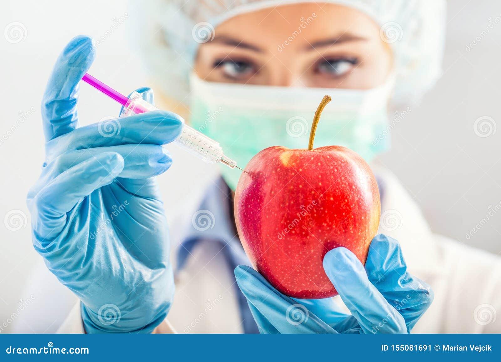 Uma mulher do biólogo altera genetically uma maçã para uma vida mais longa Pesquisador ou cientista fêmea que usa o equipamento d