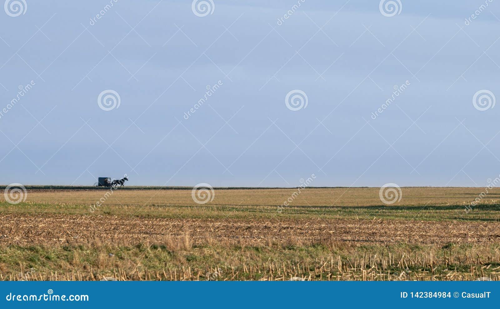 Uma paisagem aberta larga, campos e horizonte, com um carrinho Amish puxado a cavalo, o Condado de Lancaster, PA