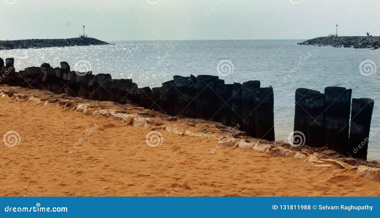 Uma paisagem do arasalaru do rio com a cerca da haste da palmeira perto da praia karaikal