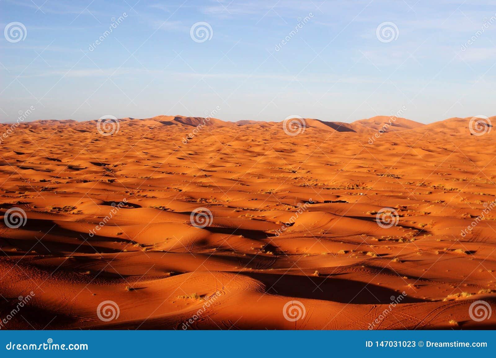 Uma parte de deserto de sahara