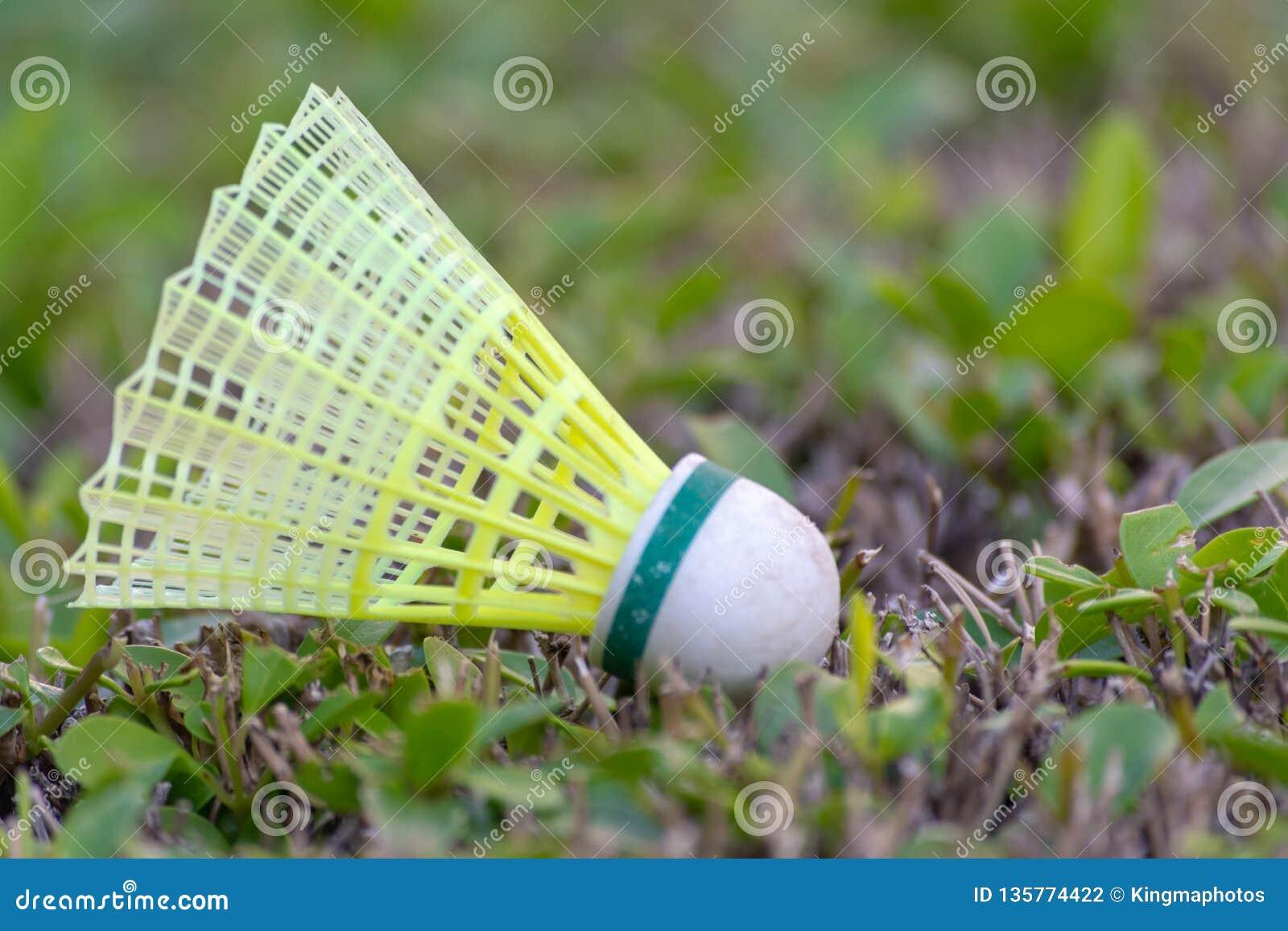 Uma peteca que descansa na grama verde