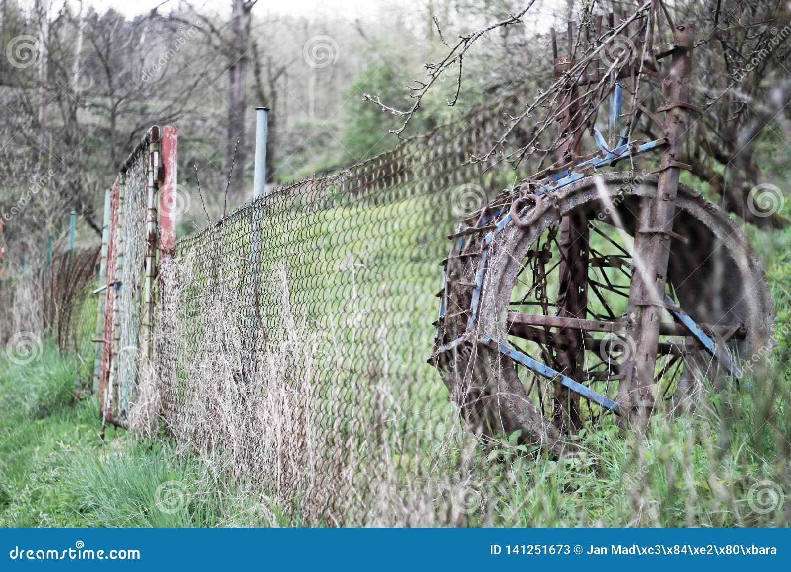 Uma roda de moinho abandonada que contraste com natureza