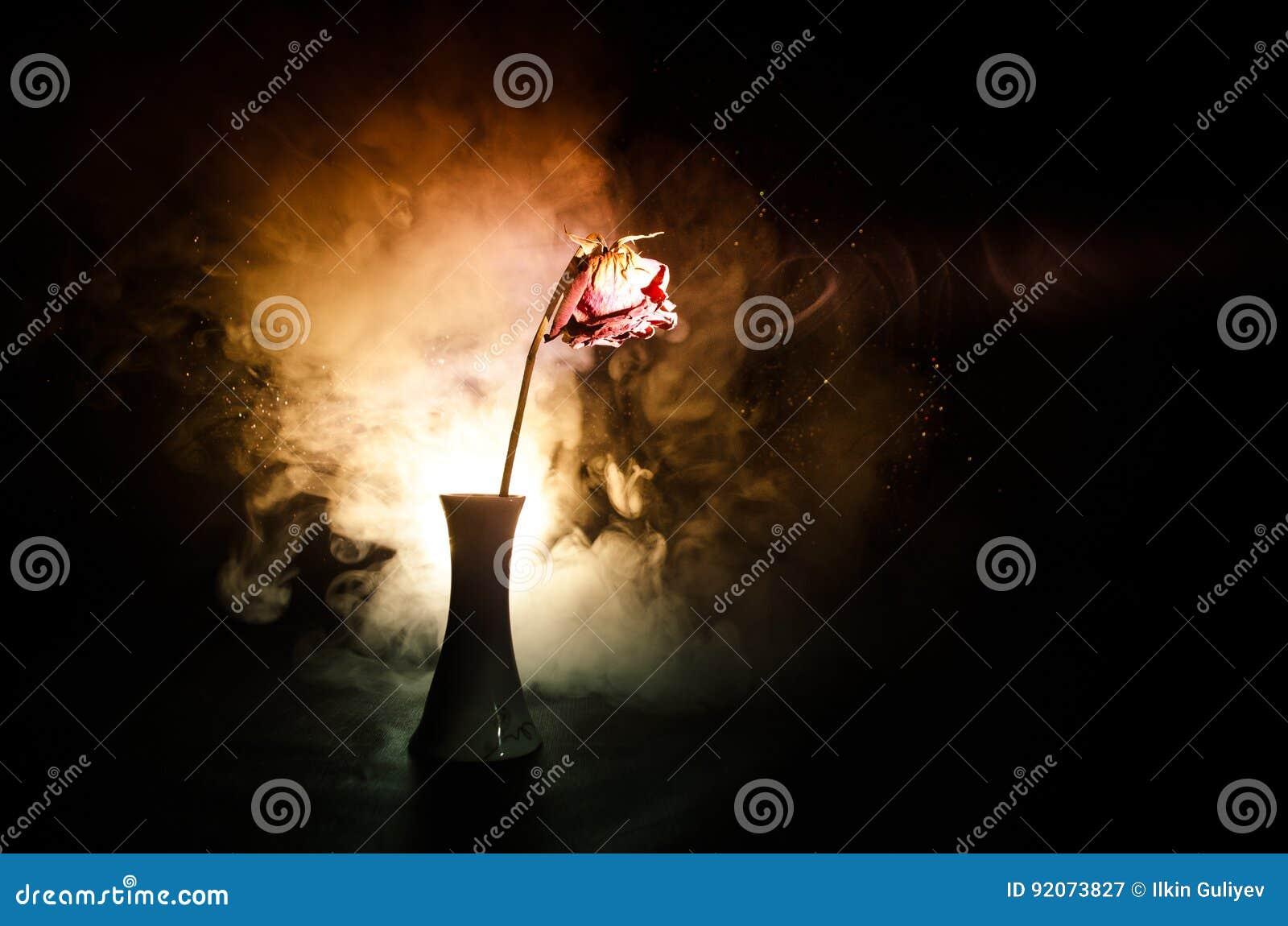 Uma rosa murchando significa amor perdido, divórcio, ou um relacionamento mau, mortos aumentou no fundo escuro