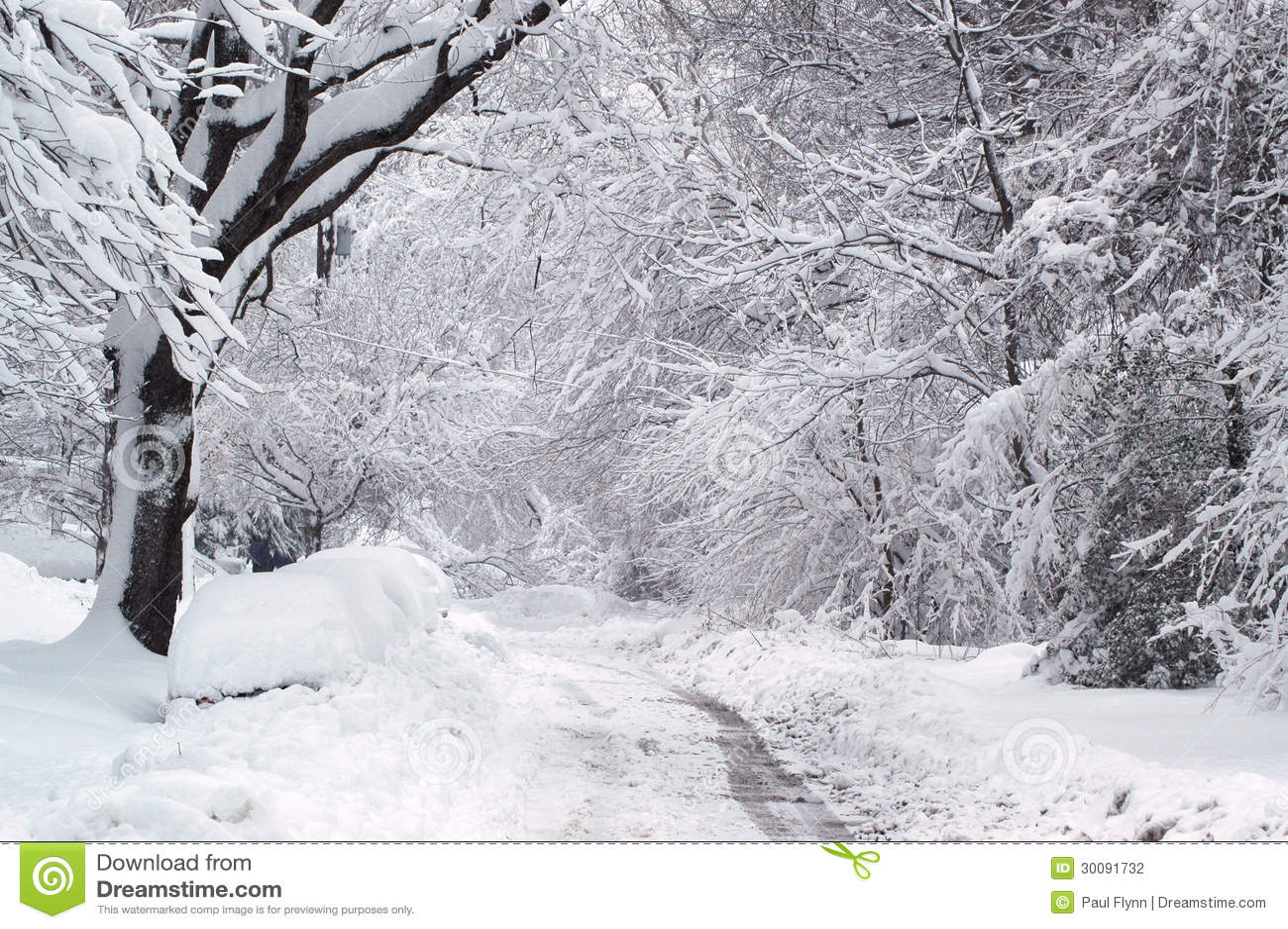 Fuga do inverno