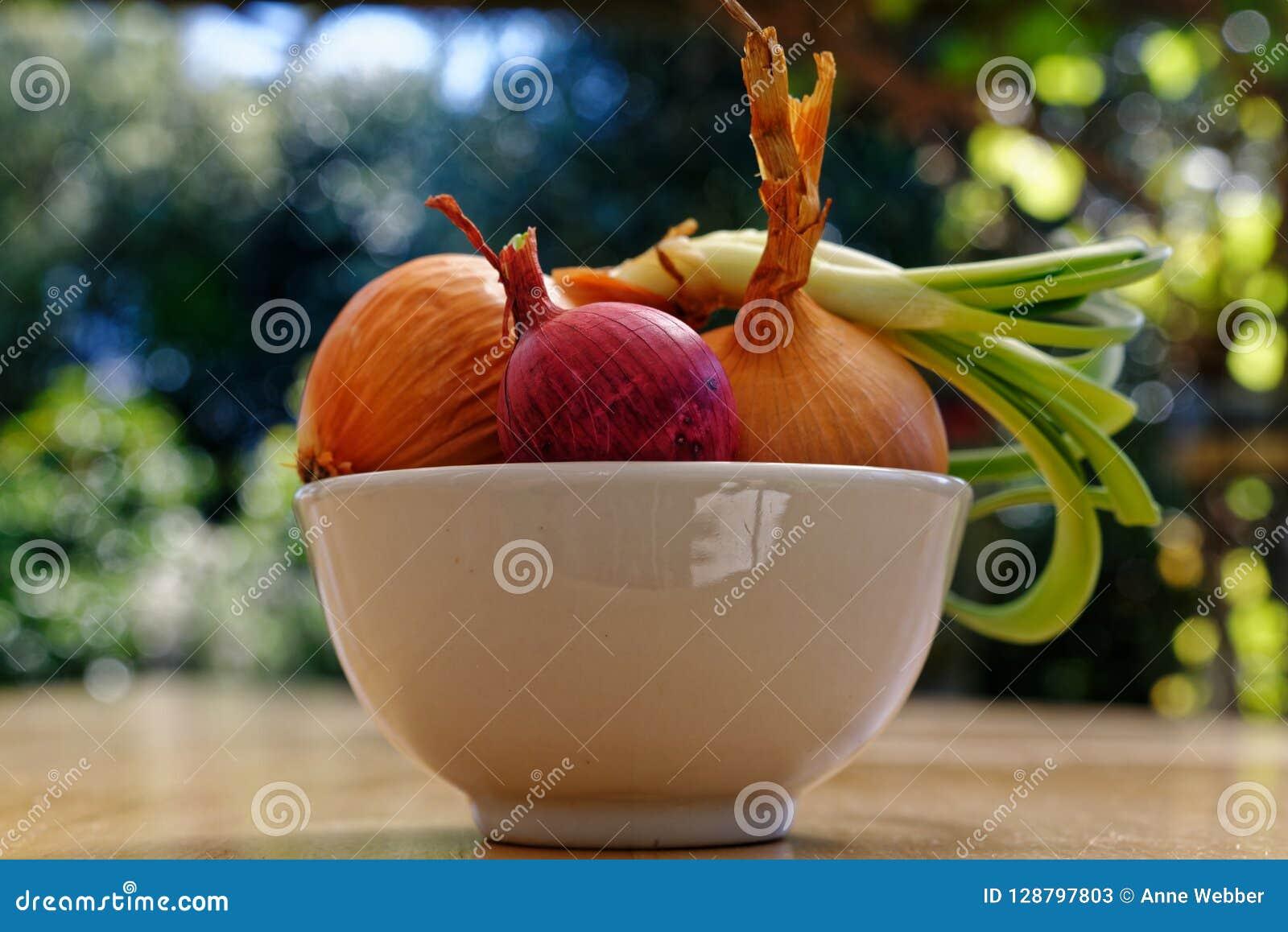 Uma seleção das cebolas, uma de que começou crescer