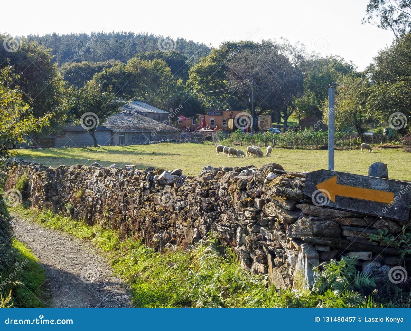 Uma seta amarela Camino marca em uma parede da seco-pedra - Ventas de Naron, Galiza, Espanha