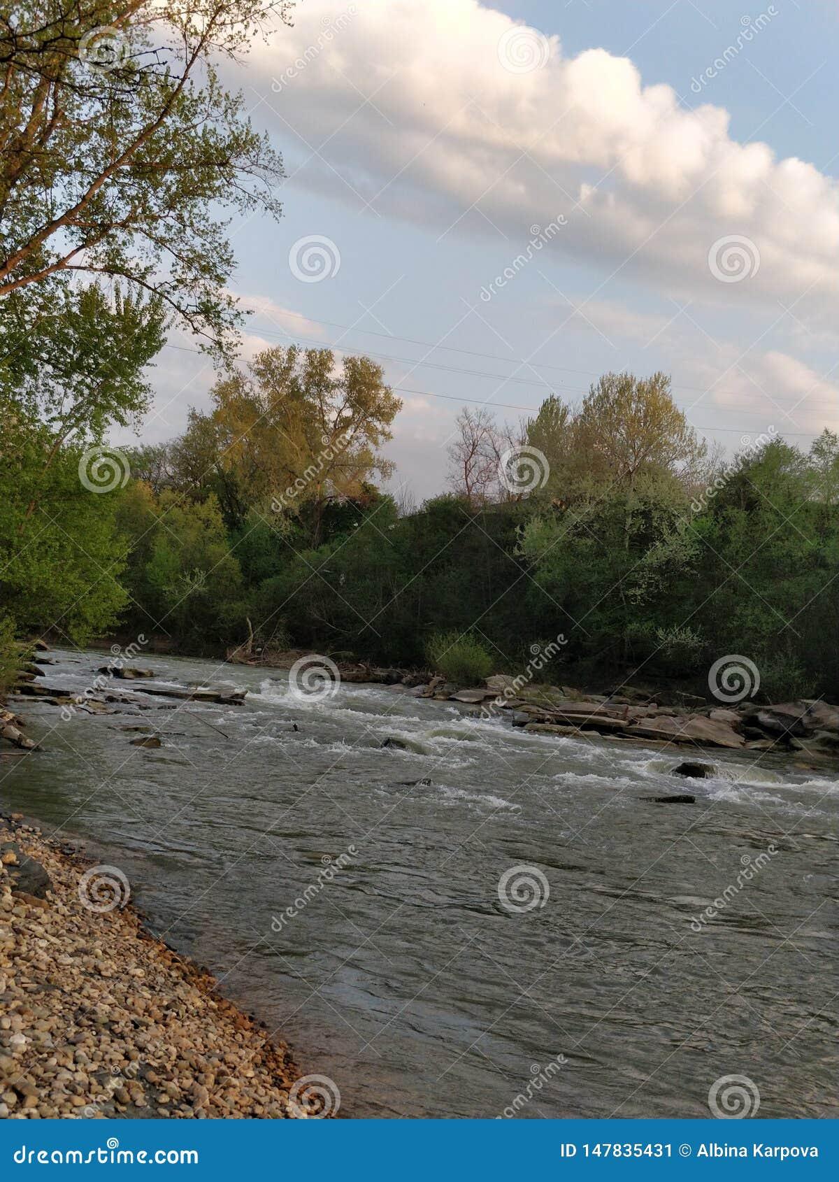 Uma vista bonita do rio da montanha