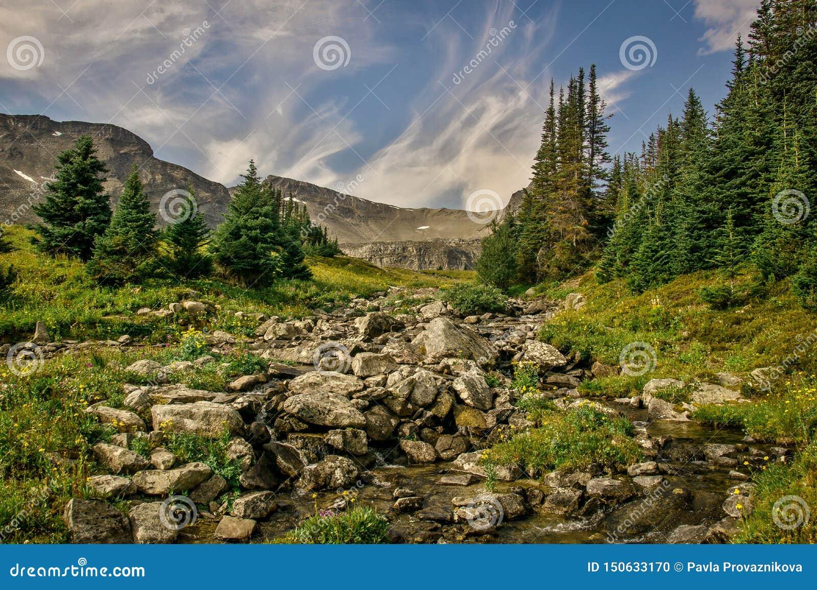 Uma vista de um vale em torno da passagem pequena da pá em Rocky Mountains