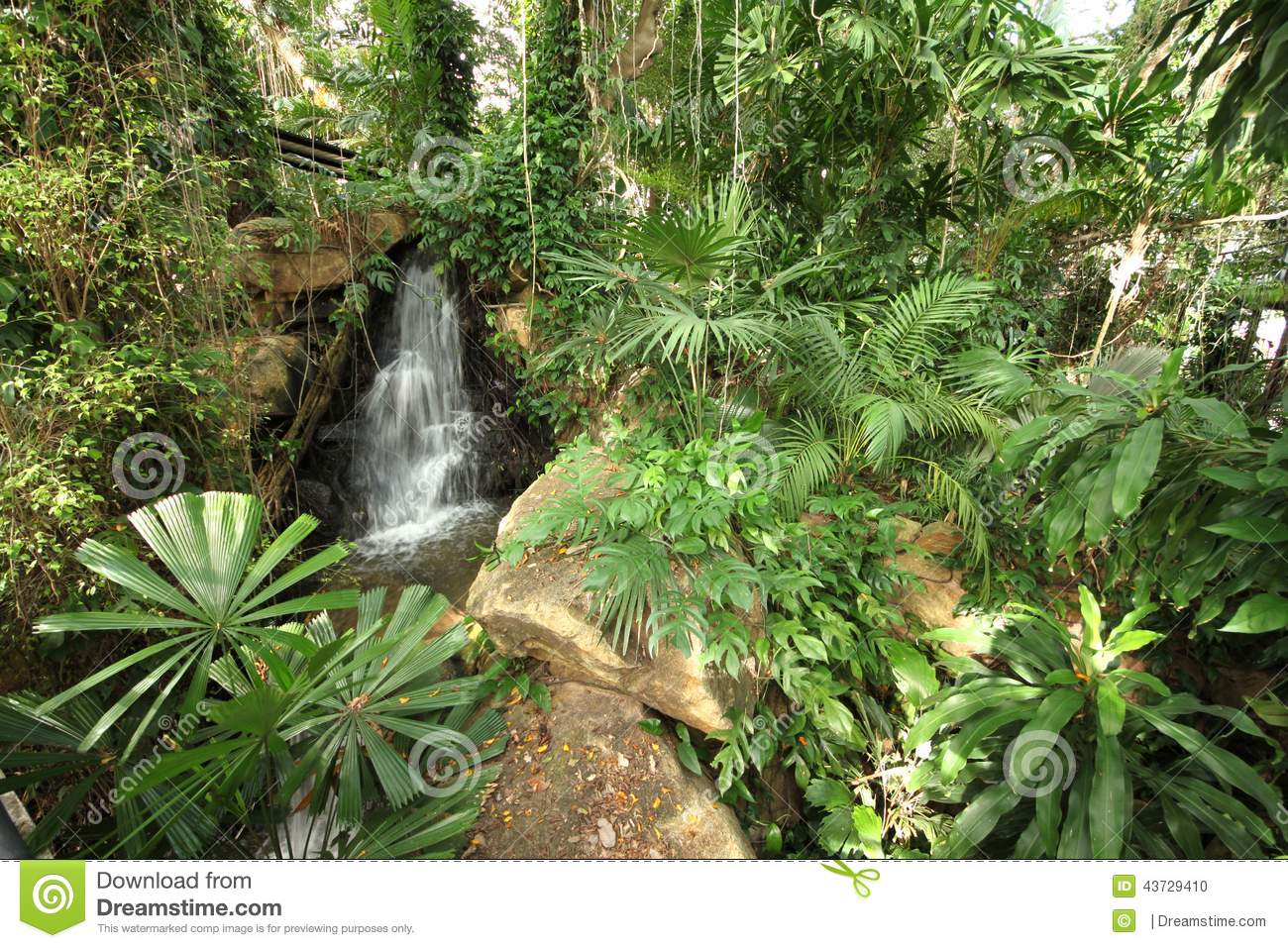 pedras jardim botanico:Waterfall Tropical Garden Plants and Flowers