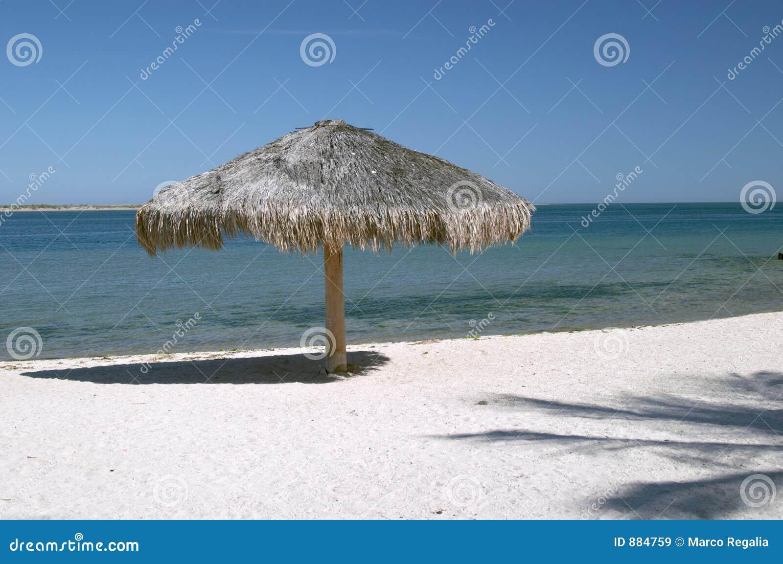 Umbrella on La Paz beach