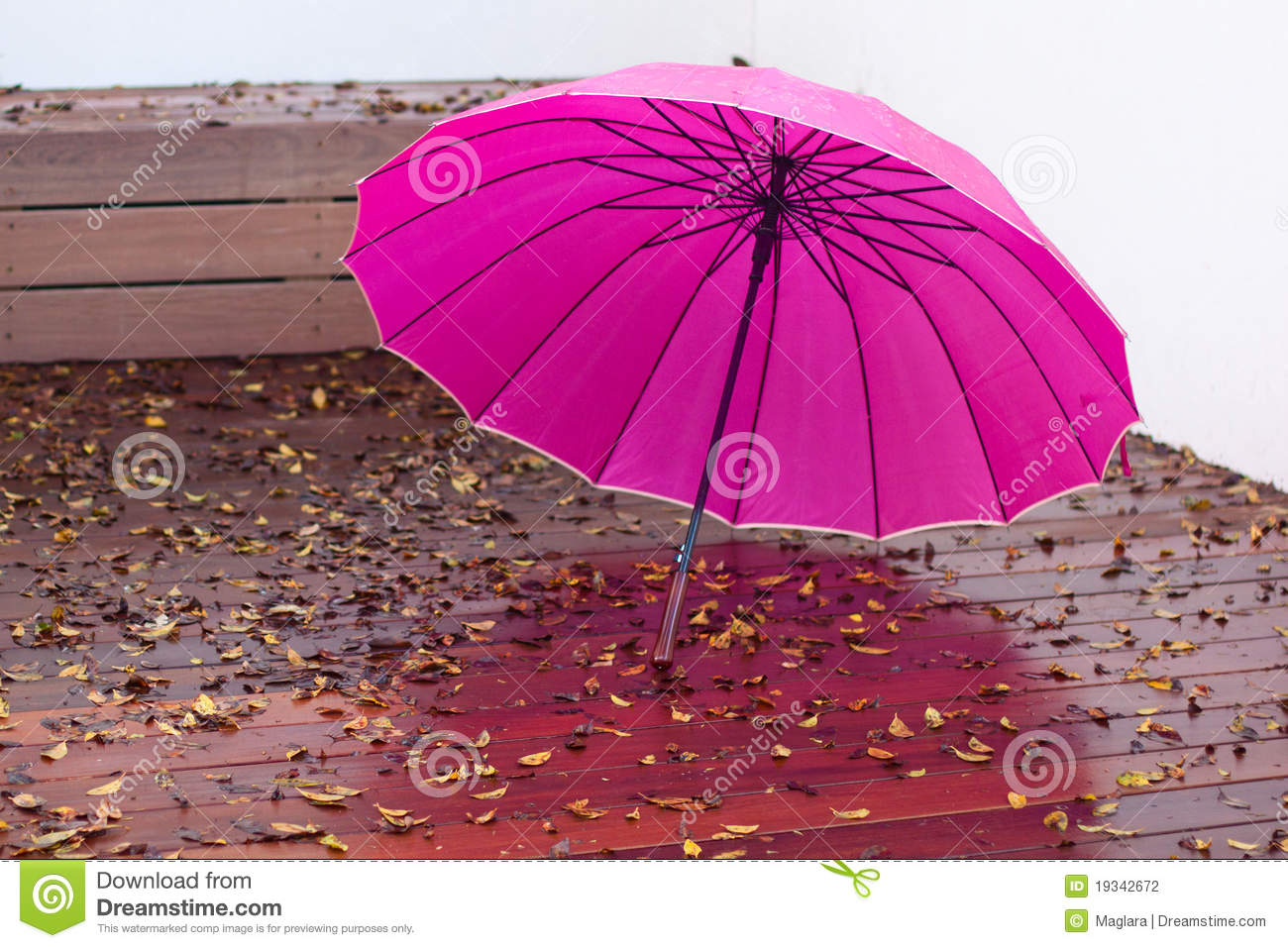 7cd5310258da4 Pink umbrella on the wet wooden floor and autumn leaves after the rain