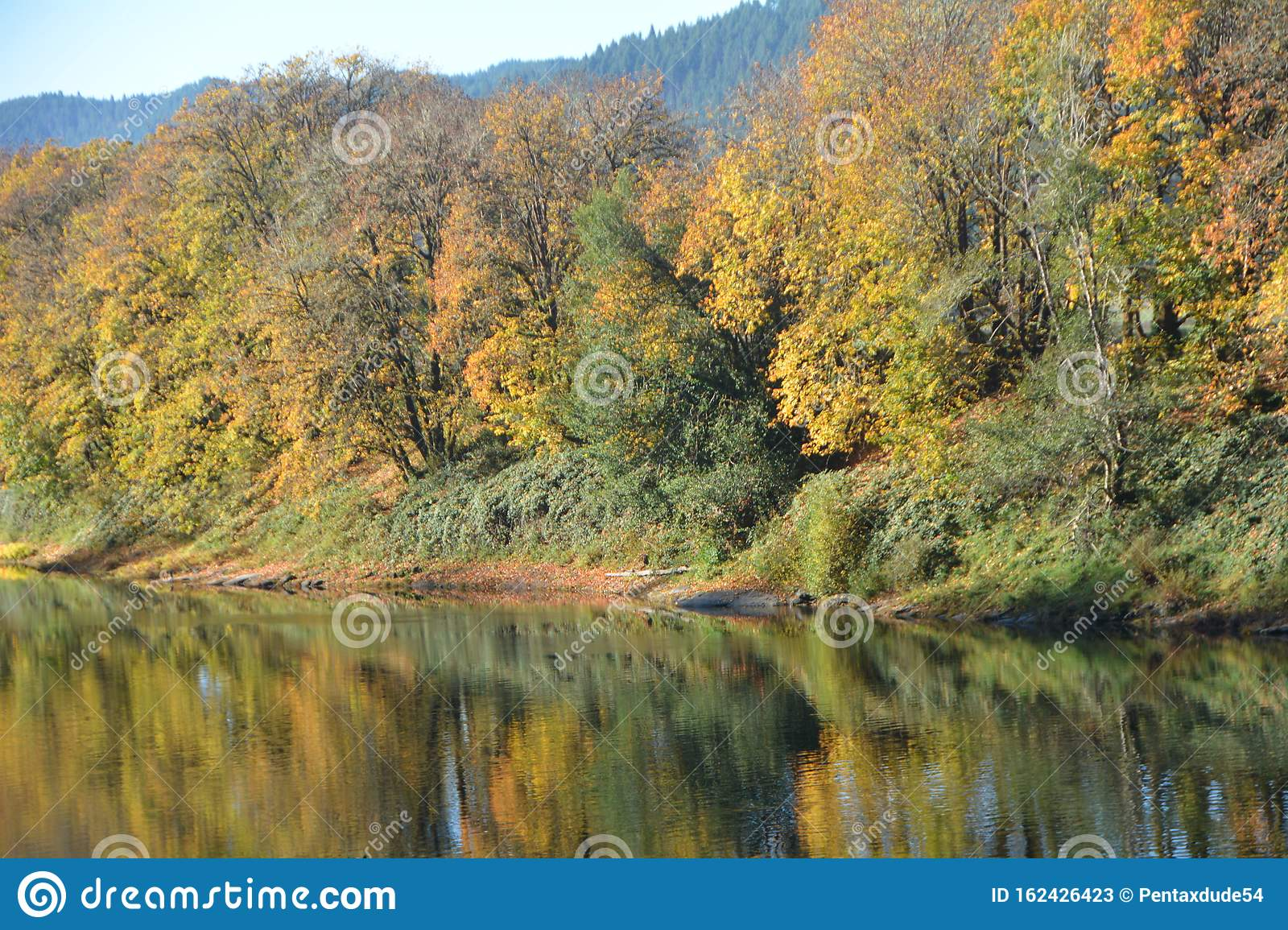 Autumn reflections of a forest on the Umpqua River in Oregon