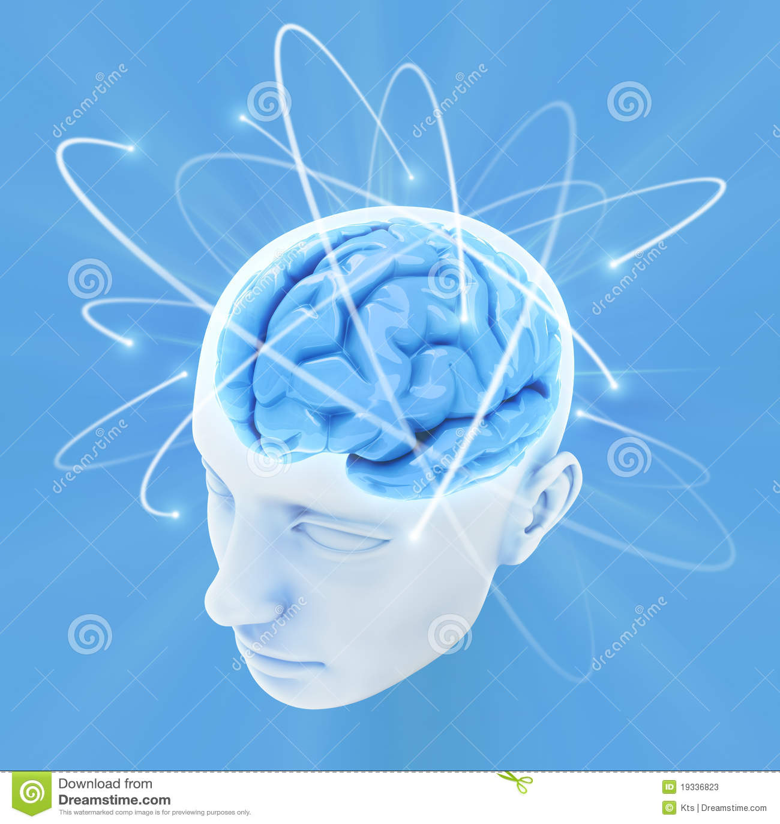 Umysł móżdżkowa władza