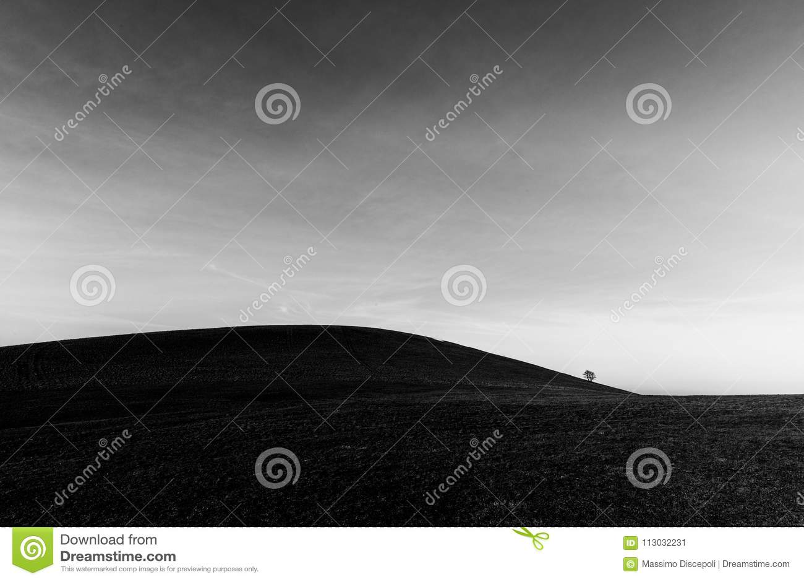 Un árbol distante, solo en una colina desnuda, debajo de un cielo profundo con las nubes blancas