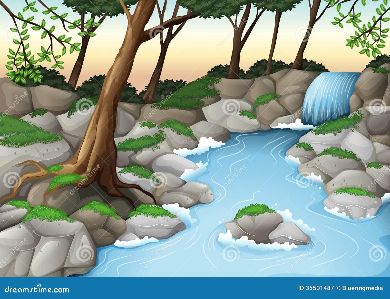 Un écosystème