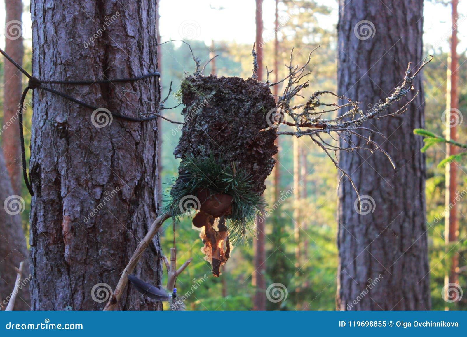 Un ídolo del bosque de los conos del palillo y del pino de la corteza hechos para engatusar las bebidas espirituosas paganism