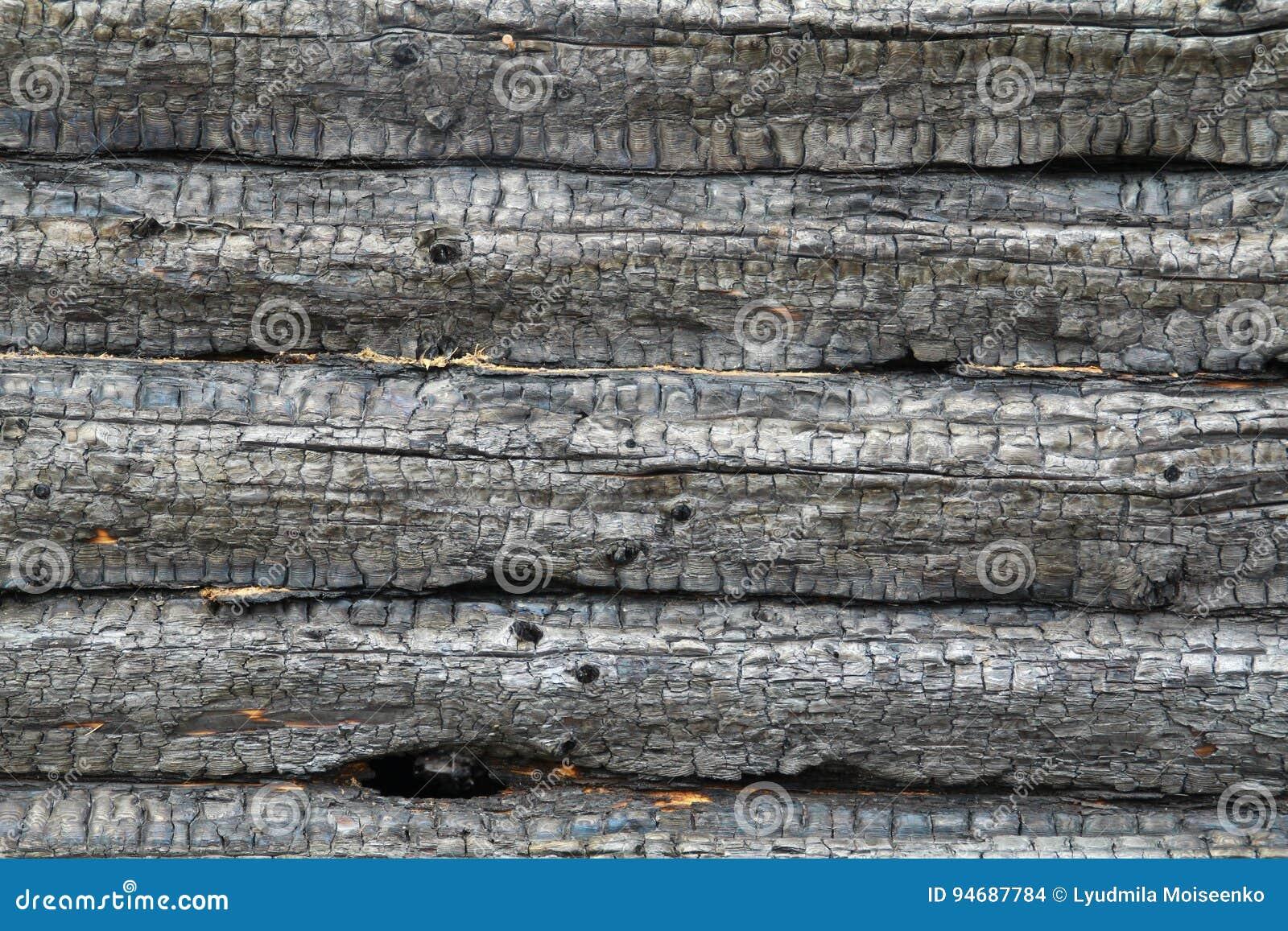Un Arbre Rond Un Mur De Bois A Noirci Par Le Feu Fond Photo Stock
