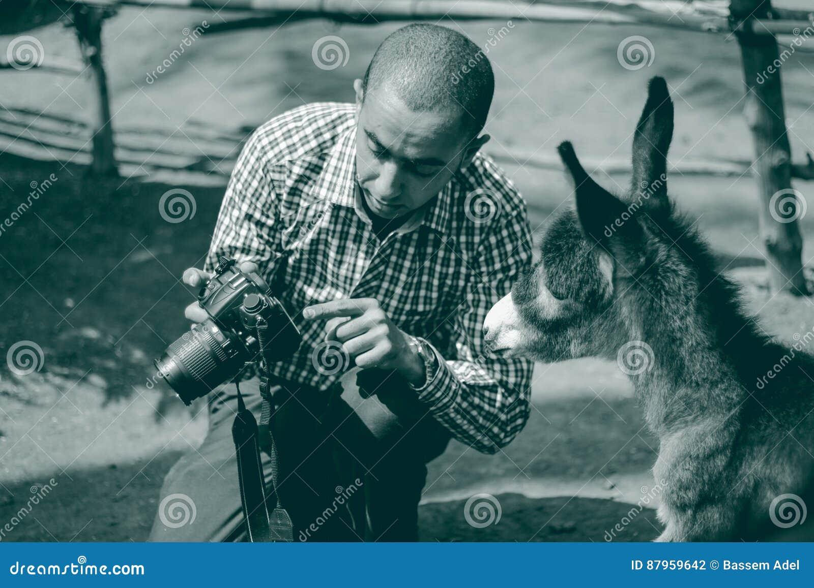 Un asino che controlla la sua foto