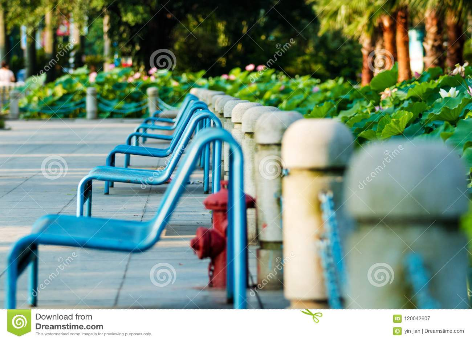Un banc dans un parc communautaire