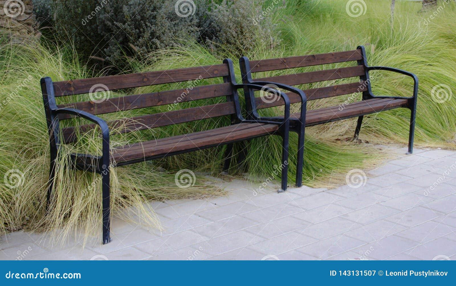 Un banco en el parque