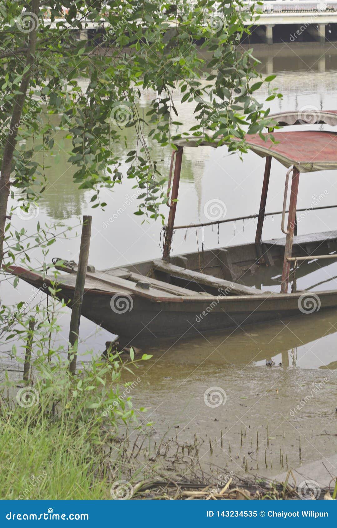 Un barco de madera con un tejado hundido en el lado del carril del río debajo del árbol