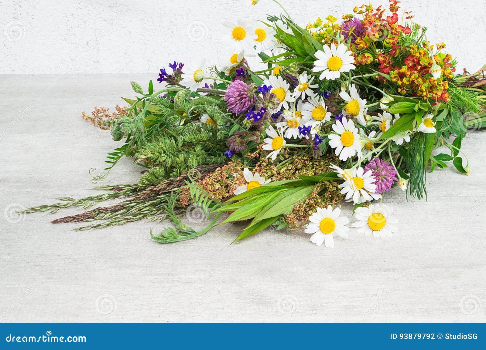 Un beau bouquet de champ d\u0027été fleurit sur un fond blanc