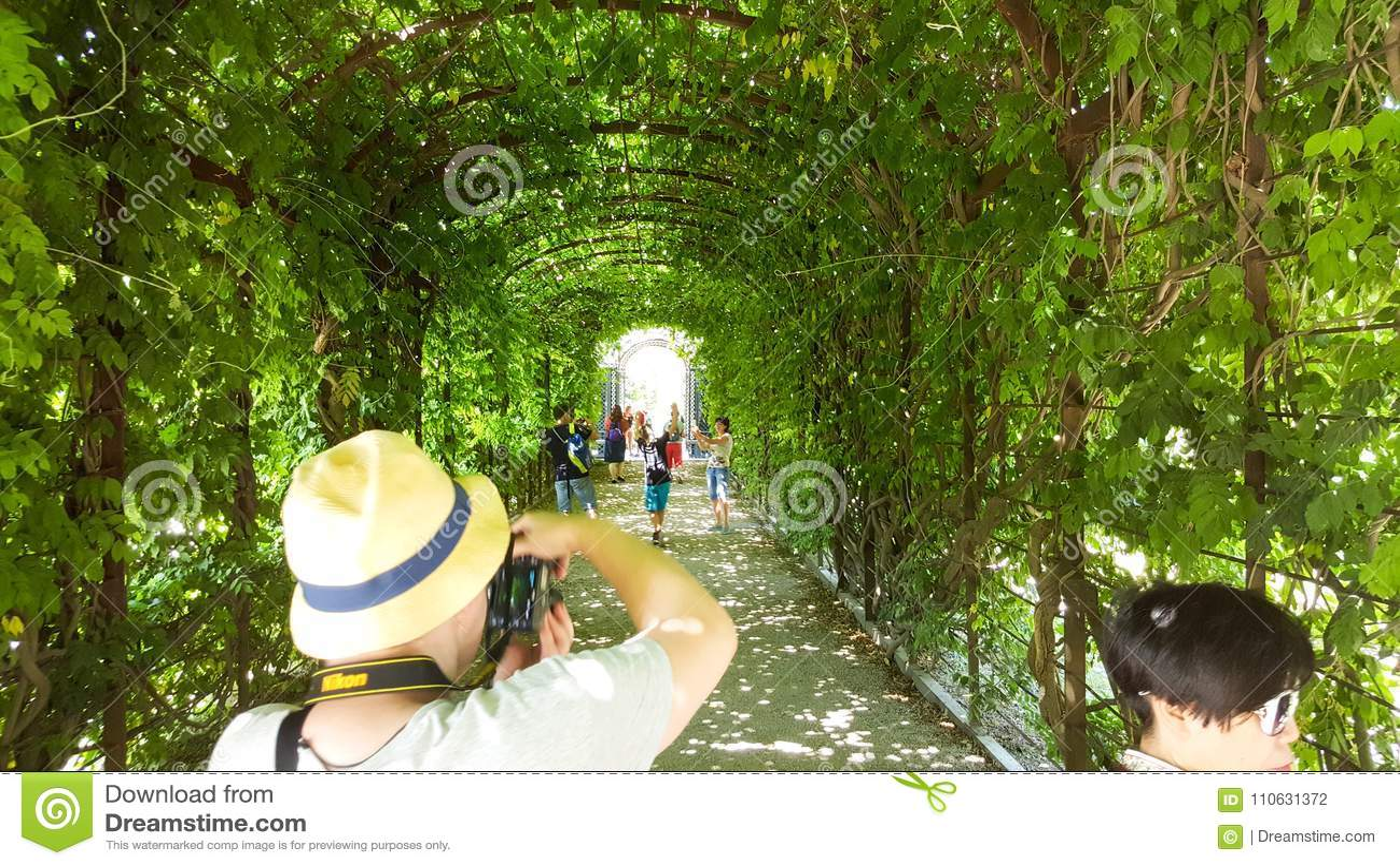 Un bel arc de végétation dans le château de Schönbrunn fait du jardinage à Vienne avec des personnes