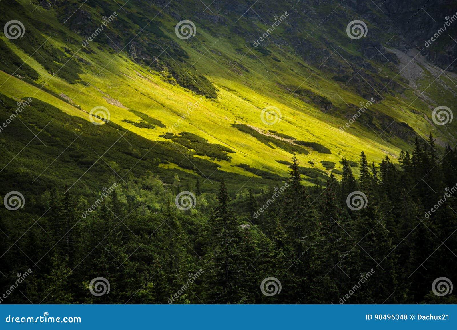 Un bello paesaggio della montagna di Tatry in un giorno soleggiato