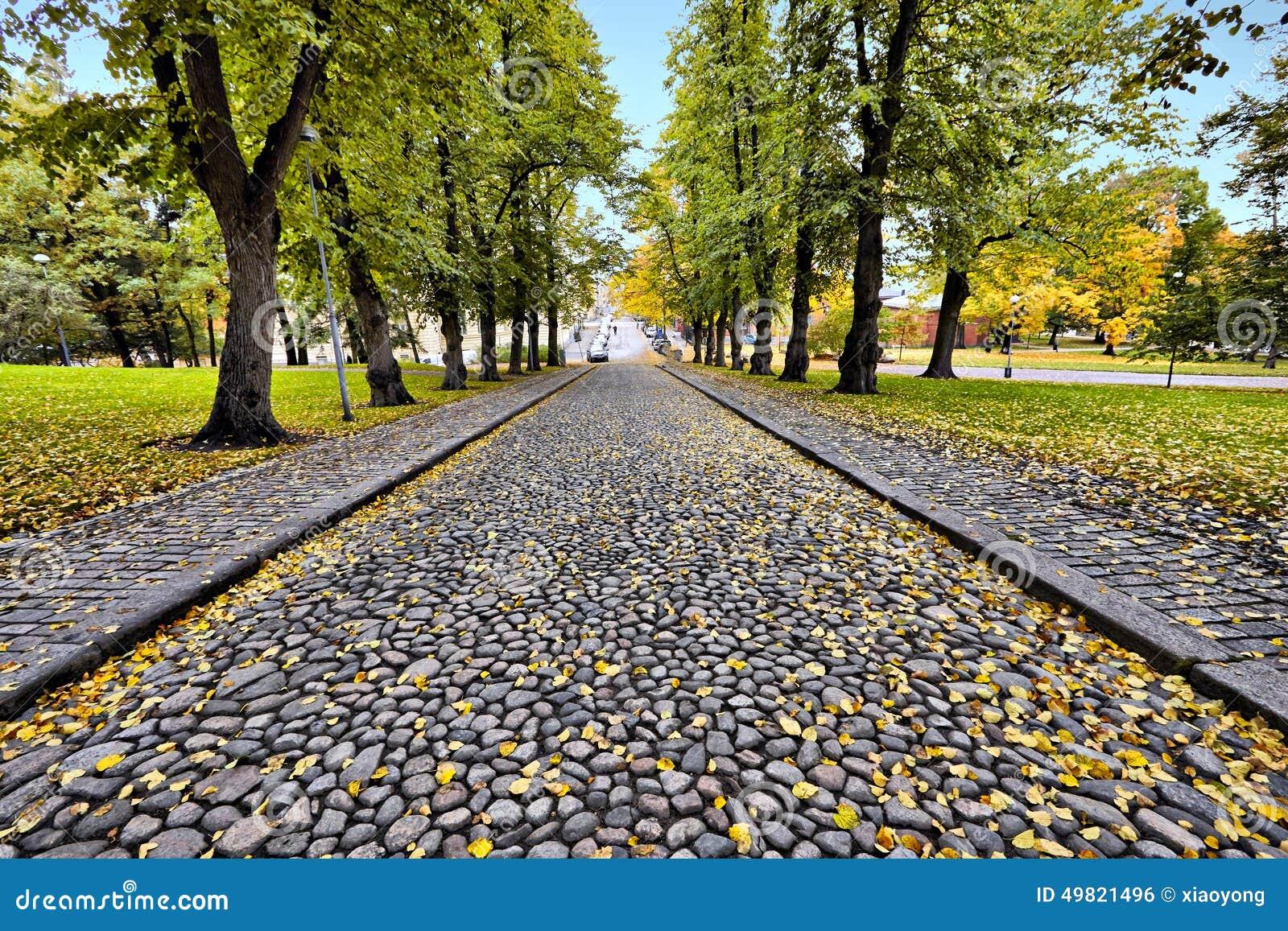 Un camino de piedra en la estaci n del oto o foto de for Camino de piedra jardin