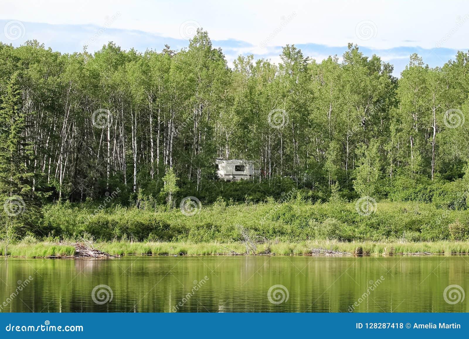 Un campeur caché dans les arbres près de l eau