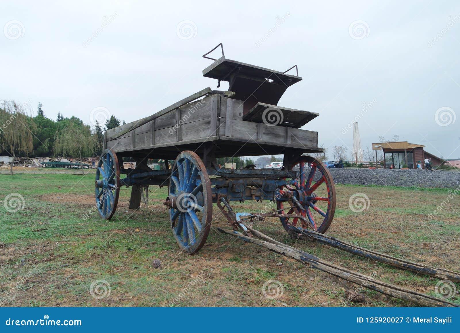 Un carro viejo del caballo en la hierba