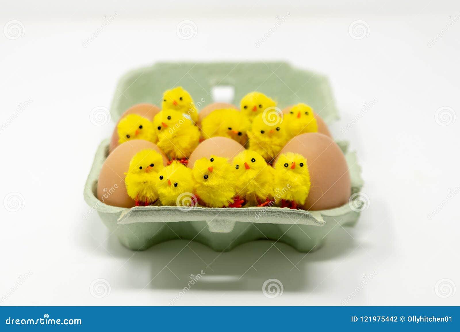 Un cartone verde che contiene la mezza dozzina eggs con 12 pulcini lanuginosi del giocattolo del ` s dei bambini sparsi sulla cim