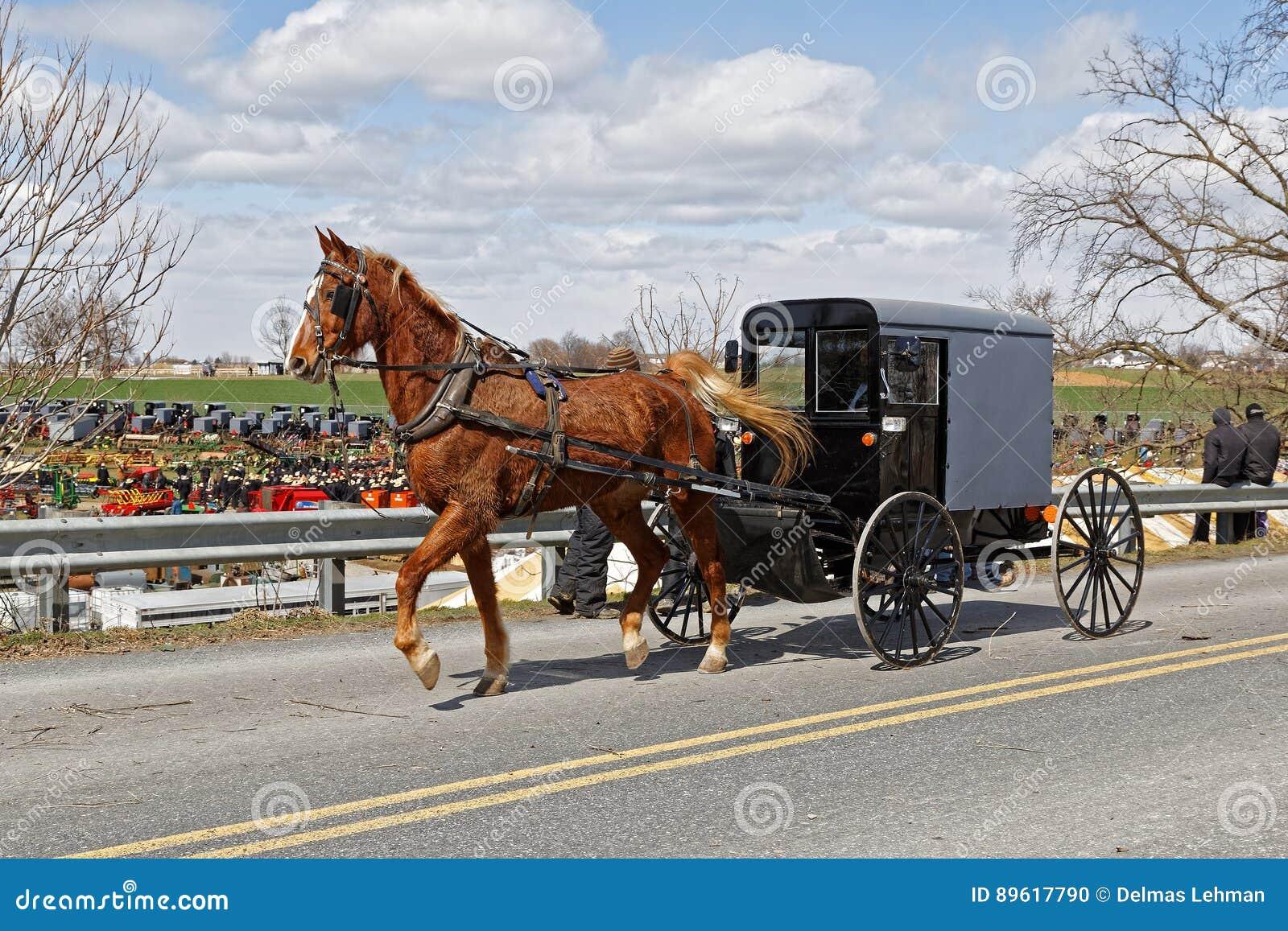Un chariot amish dans le comté de Lancaster, Pennsylvanie