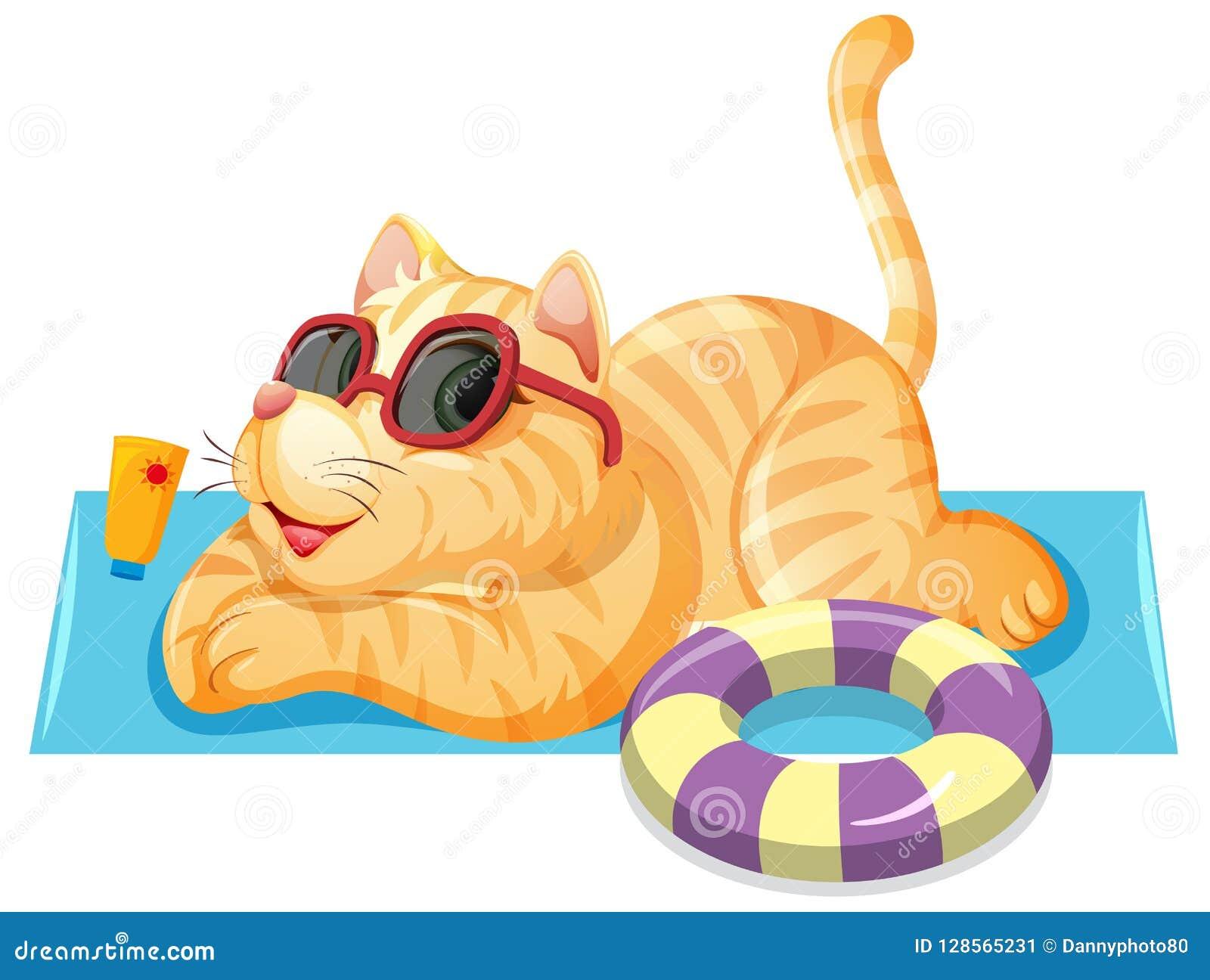 Un chat sur le thème d été