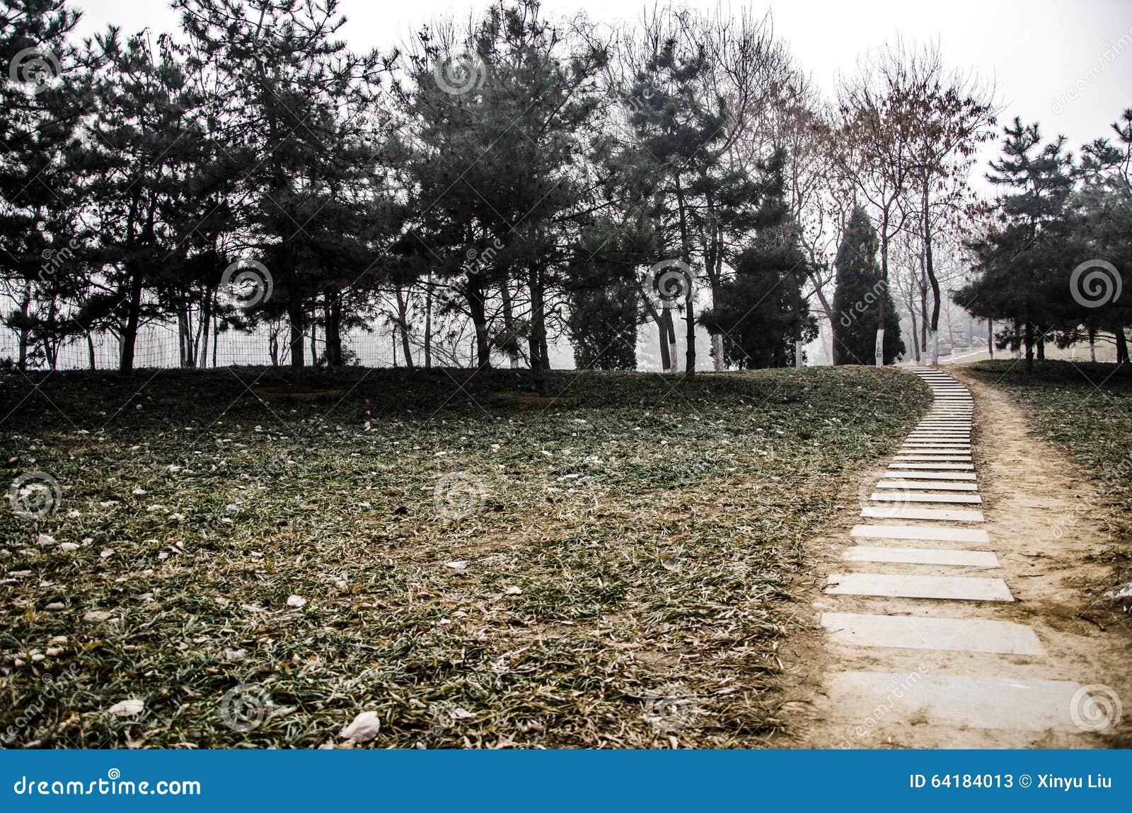 Un chemin en pierre
