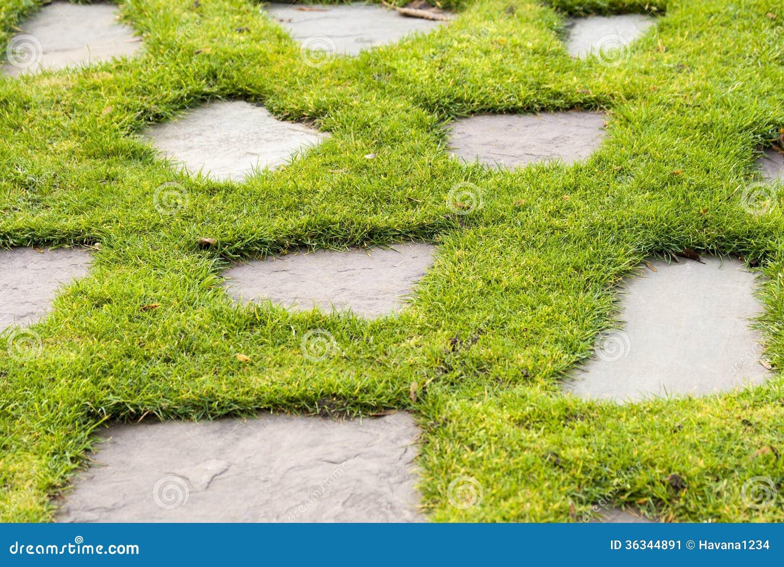 Un Chemin En Pierre Dans Le Jardin De Parc D 39 Herbe Verte