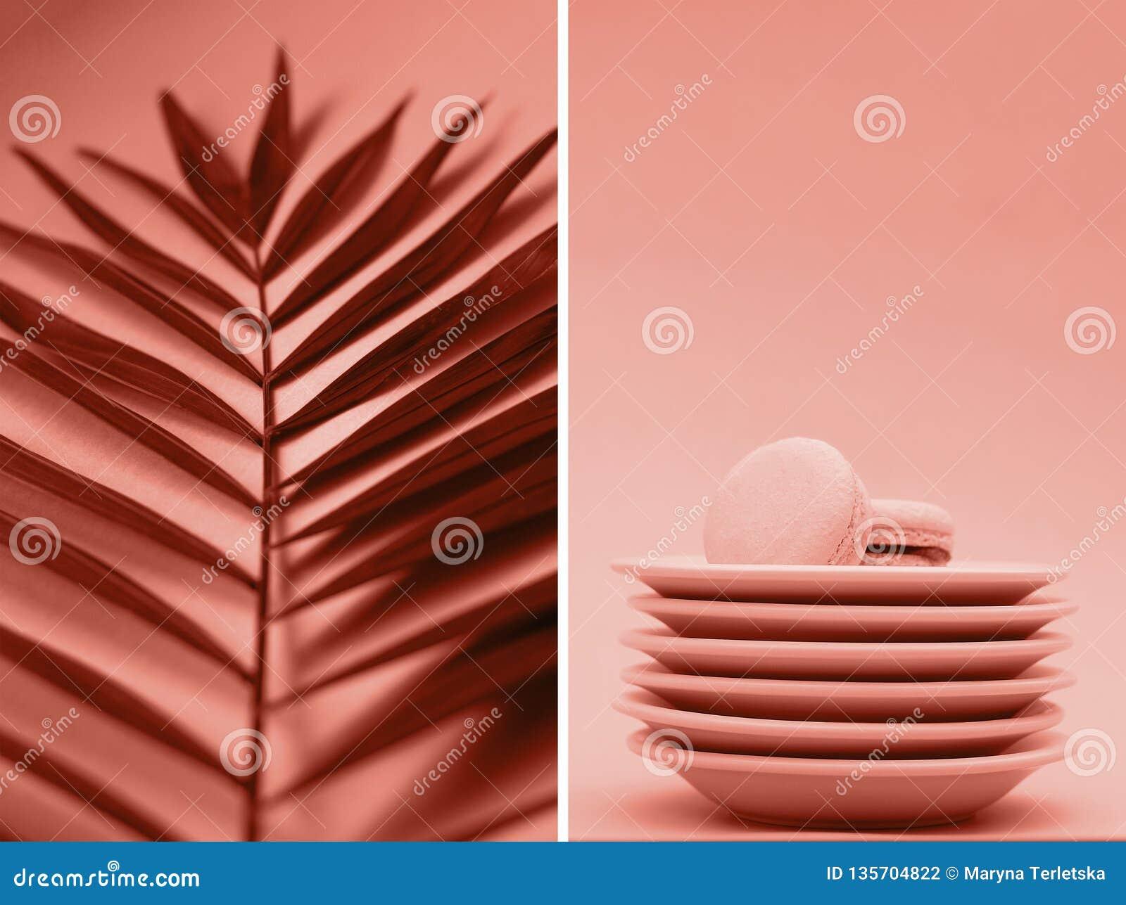 Un collage des photos de couleur de corail avec des branches et des macarons de paume