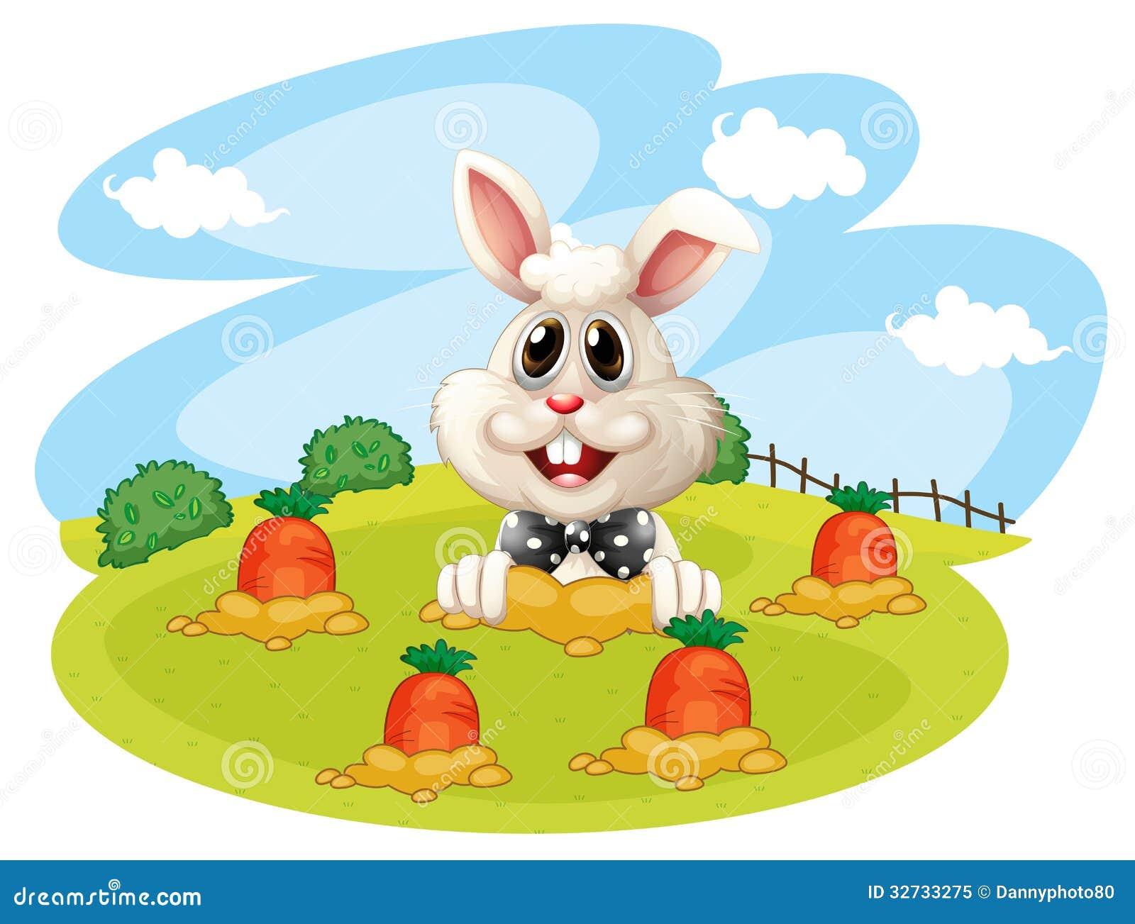 Un coniglio all azienda agricola con le carote