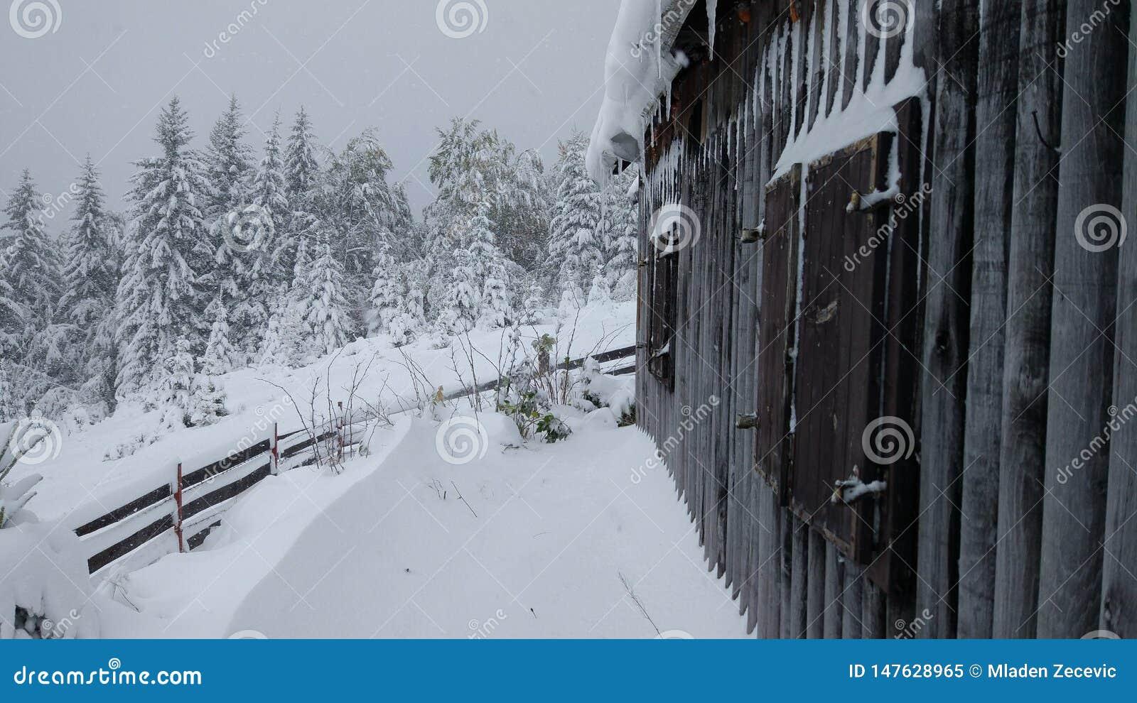 Un cottage nelle montagne