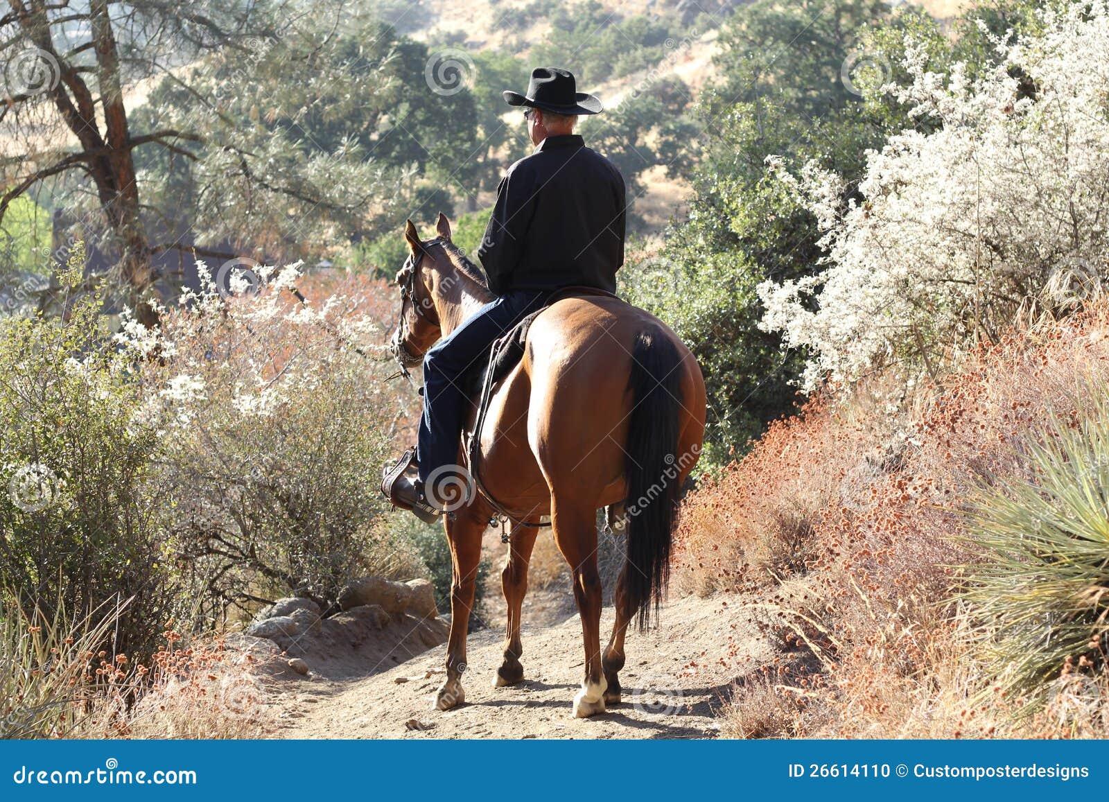 Un cowboy au soleil avec des centrales.