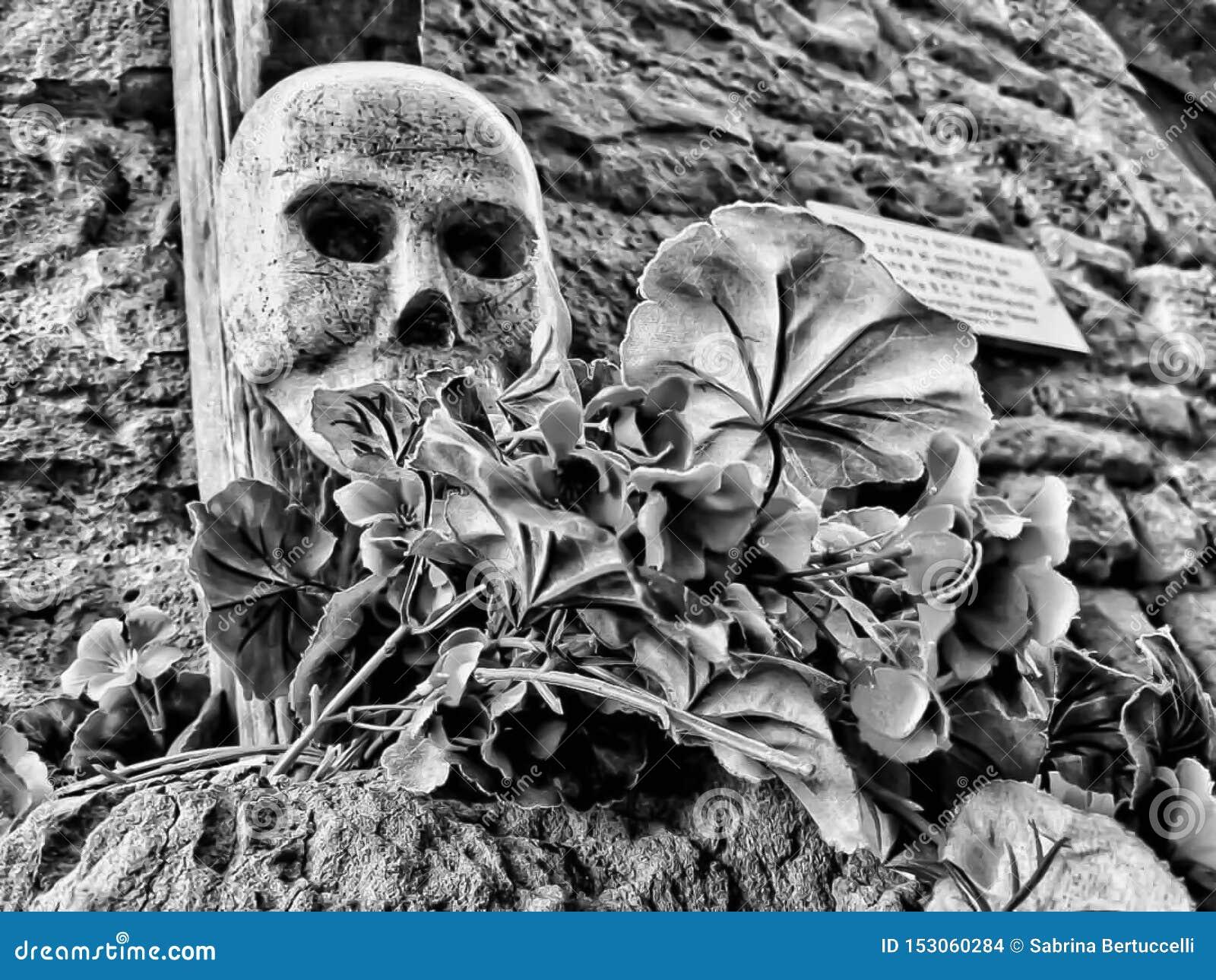 Un dettaglio del cranio con i fiori