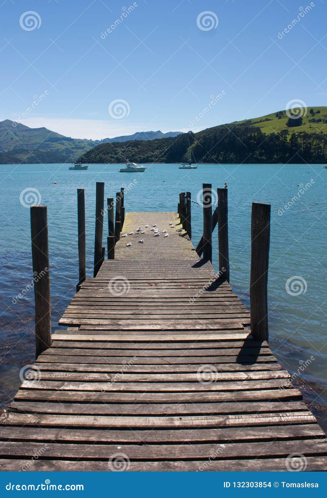 Un embarcadero de madera, un mar y colinas verdes en Akaroa cerca de Christchurch en la isla del sur en Nueva Zelanda
