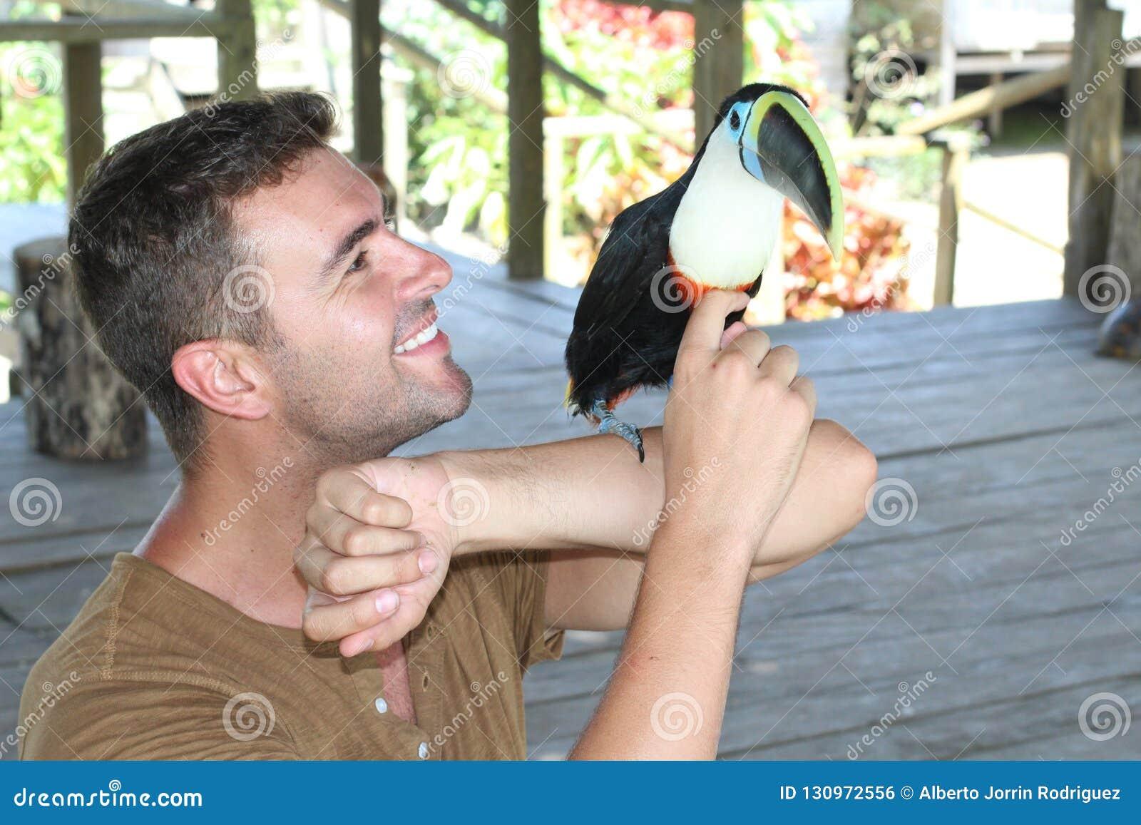 Un fonctionnement plus docile d oiseau avec un toucan