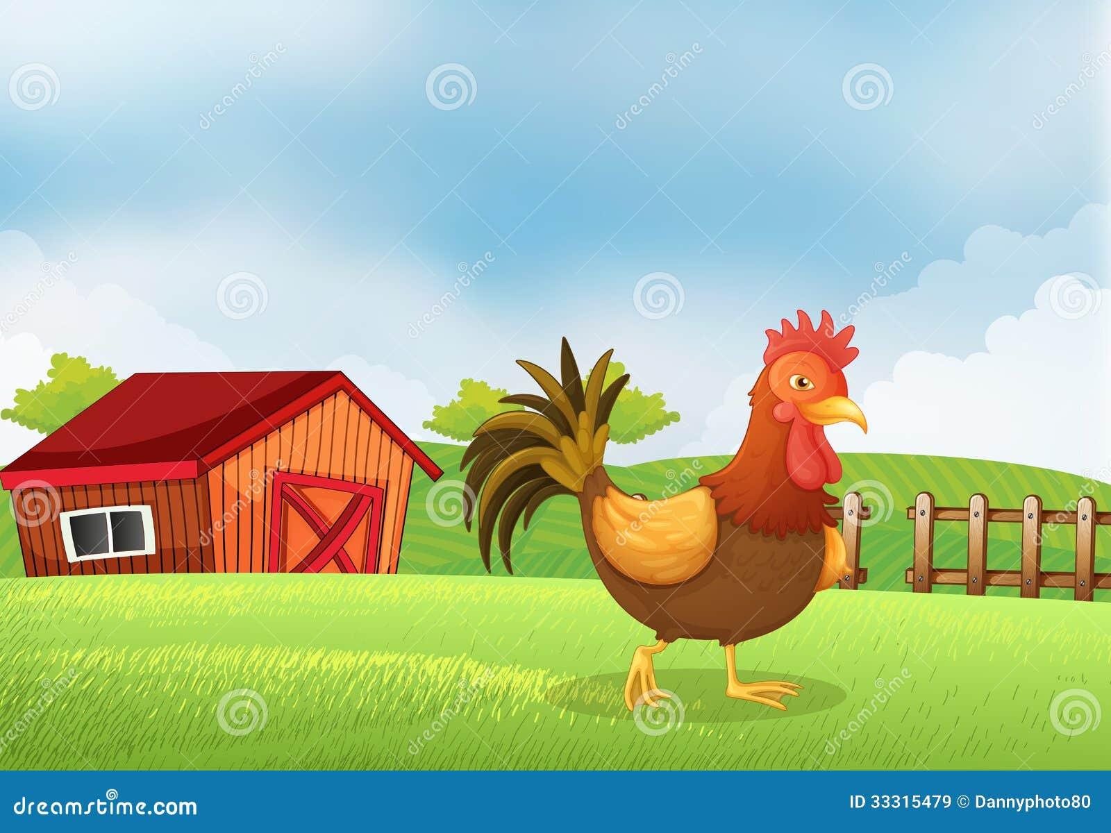 Un gallo en la granja con una casa de madera en la parte - Parador de la granja fotos ...
