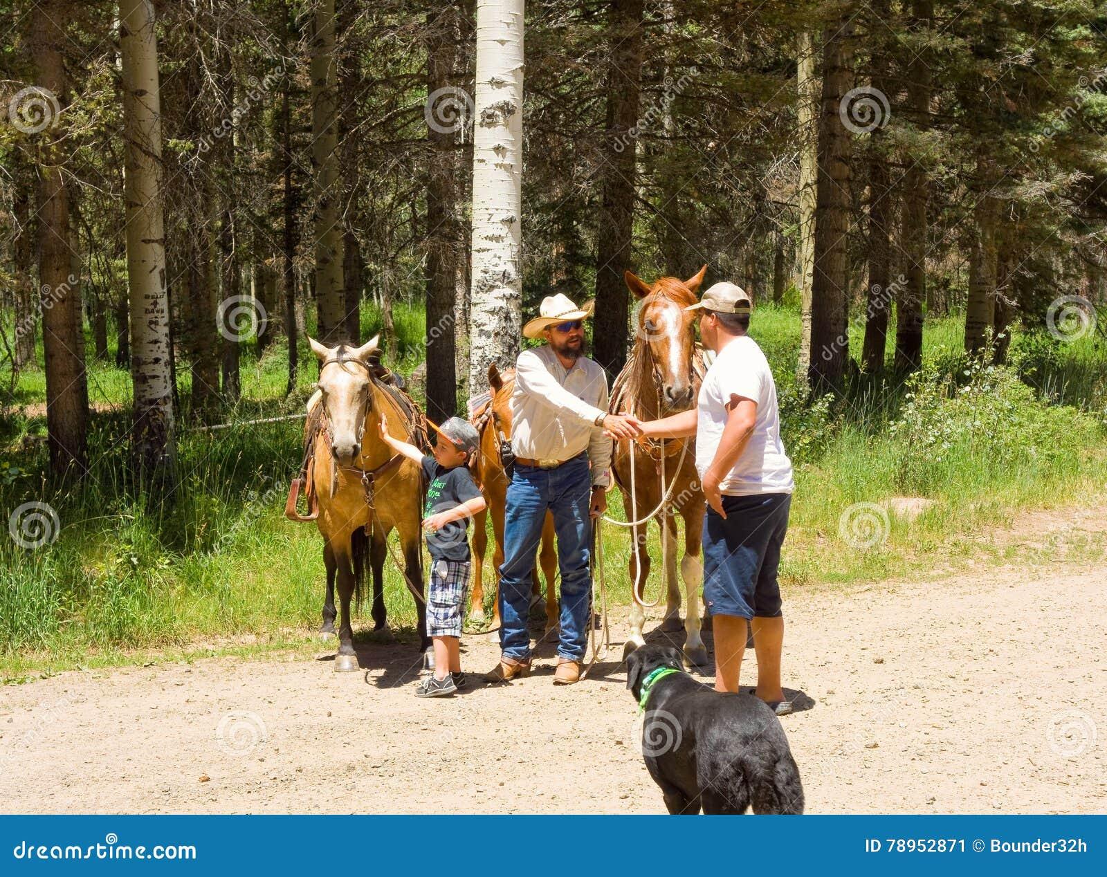 Un garçon rencontrant son premier cheval